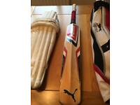 Youths Cricket Kit