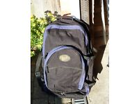Large Rucksack with concealed straps