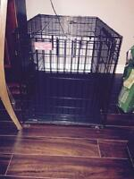2 extra large black collapsible dog crates