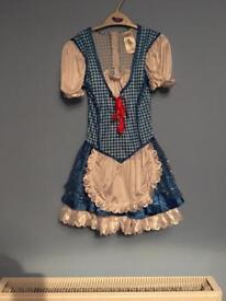 Child's fancy dress costume
