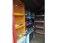 Gloster canaries and cages for sale
