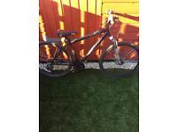 21 gear bike