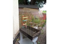 Parakeet cage, suitable for two parakeets, a small Parrot, or other similar birds.
