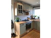 Kitchen units sage green