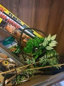 Vivexotic vivarium and accessorys