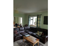 5 Seater Brown leather suite & matching armchair