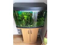 64L love fish tank with stand and accessories
