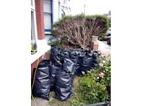Gardening and landscaping services. Hedges. Trees. Patios. Flowers. Ground work. Weed treatment.