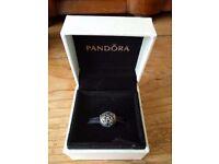 Pandora Charm (never worn)