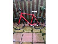 Trek Fx 7.3 Bike in Red