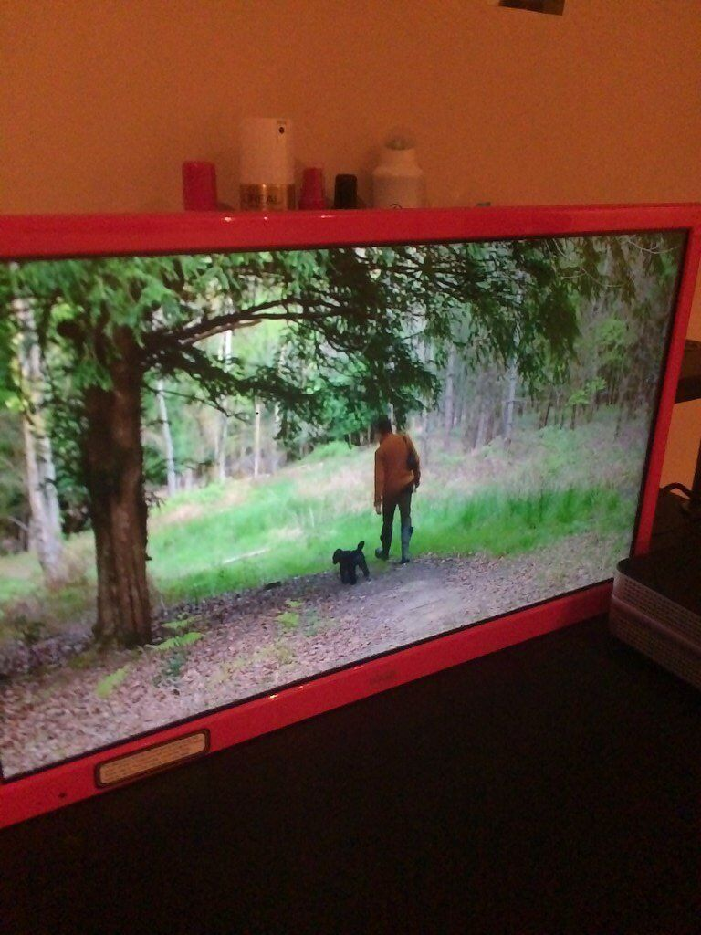 Awesome Pink TV with Built-in DVD Player, LOGIK L24HEDP15 24''; LED TV