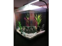 55 litre Aquarium with LED light, brand new heater and accessories