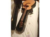 Breedlove AJ250 SF PLUS acoustic guitar