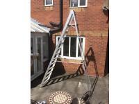 Massive 12 step Aluminium step ladder