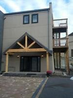 Bright 1 Bed All Inclusive, Newer Build, Downtown, Aug 1