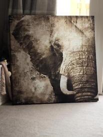 Elephant print canvas