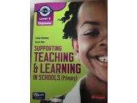 Supporting teaching and learning level 3