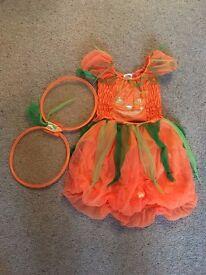 Girls Halloween costume outfit pumpkin fairy age 2-3