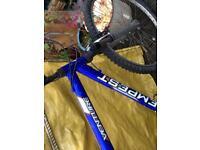 Tempest Venture Bike