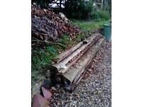 Firewood / Scrap wood