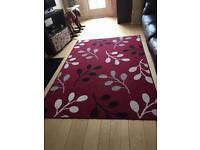 Large Rug in great condition