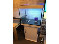 juwel lido 200 litre fish tank and stand in white