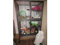 Rat/Chinchilla cage and accessories complete starter kit, barely used worth £330