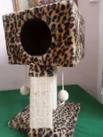 Cat Scratcher and Bed