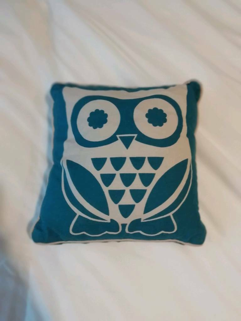 Cute Little Owl Cushion