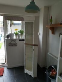 White painted corner cabinet with light, mains powered