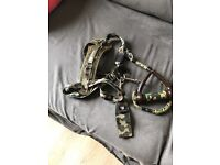 Ezydog harness and lead
