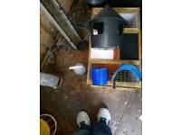 Pigeon loft equipment