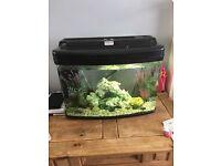 Interpet Fish Pod Glass Aquarium Fish Tank - 64 L by Interpet