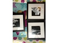 3 x Ikea Picture Frames