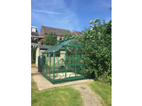 Used 8ft Greenhouse in excellent condition, collection only, buyer dismantles, with spare glass.