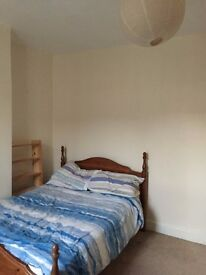 Comfortable Room Available for Professional