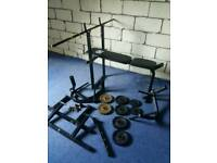 DP Fit for Life weight bench with weights and dip station