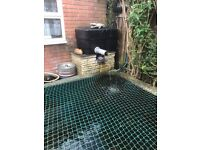 Complete Pond System and Fish