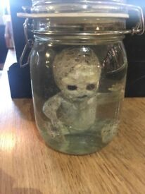 Trout Baby in Jar curiosity