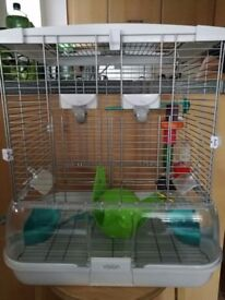 Perrot or rats cage