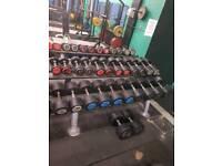 Hammer strength dumbells