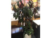 Office Plant Artificial