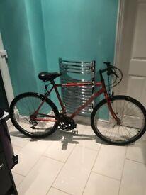 boys 24 inch mountian bike