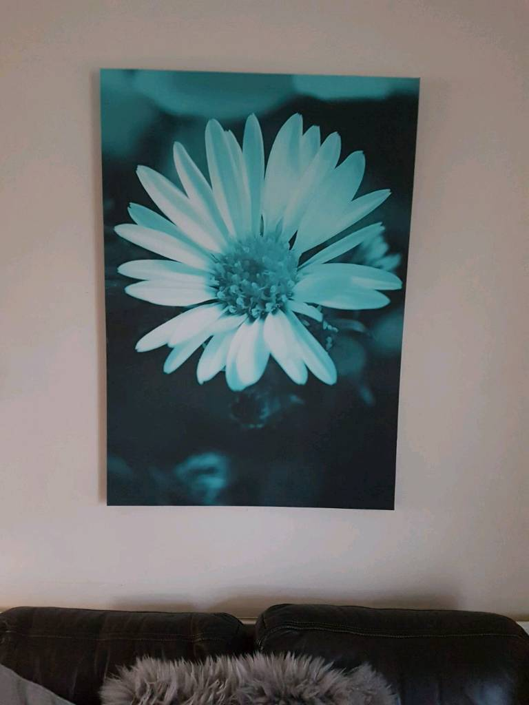 Next canvass teal flower pictures