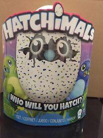 Hatchimals green brand new in box