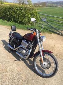XL 883C Harley Davidson Sportster