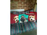 Set of dog cushions