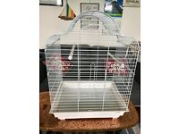 Large white budgie cage