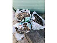 Pea Pebbles for garden