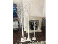 Set of 3 light up birch trees